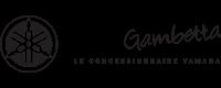 Yam Gambetta